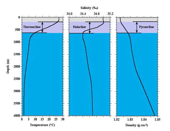 Ocean profiles.